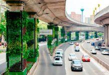 México transforma el hormigón en árboles.