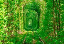 Los 15 lugares más hermosos del mundo