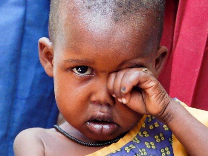 África mayor natalidad