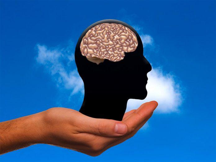 Curiosidades que el cerebro no es capaz de desvelar