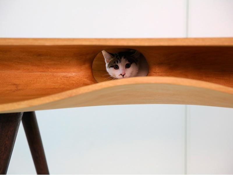 Mesa cama para el gato
