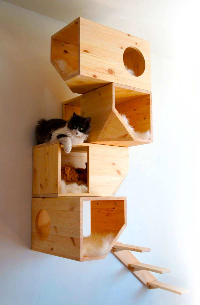 Estantería para gatos
