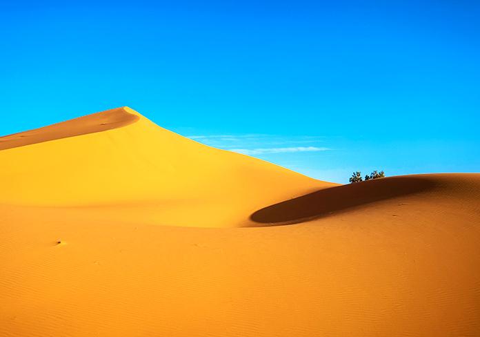 Las dunas y las olas del mar tienen más en común de lo que imaginas