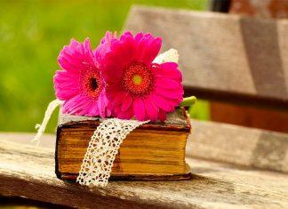 4 curiosidades de La Biblia que te harán leerla de nuevo.