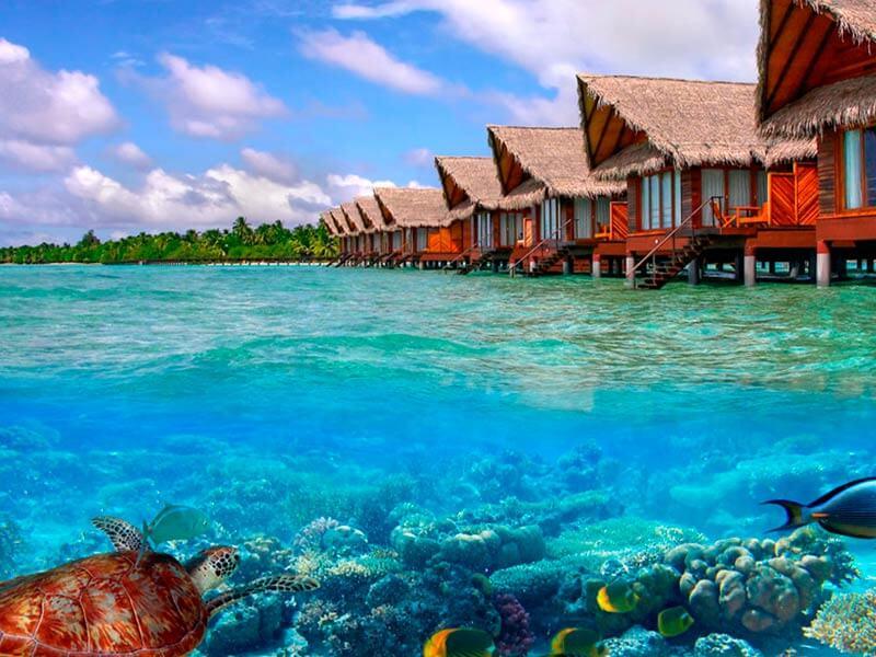 20 curiosidades sobre las maldivas que no sabes flipa net for Islas maldivas hoteles en el agua