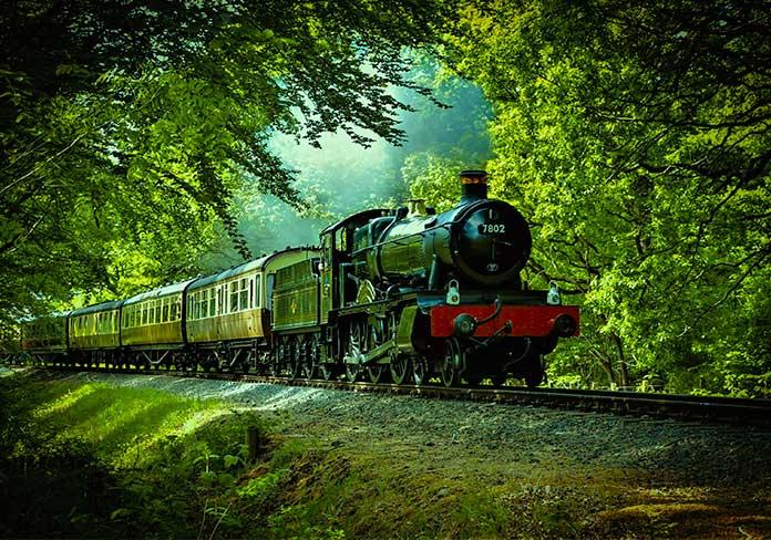 Tren por la naturaleza